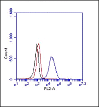 FC in THP-1 cells